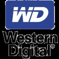 western digital data recovery alexandria va
